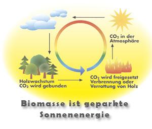 CO2-Kreislauf Biomasse